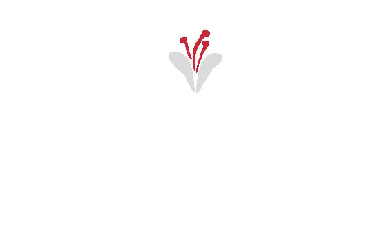 Saffron-Tech